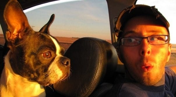 Dog and Dog Owner in Car